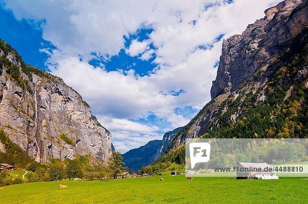 Waterfall  Lauterbrunnen Valley  Canton Bern  Switzerland