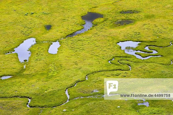 Nationalpark Planung Landschaft Bach Pfütze Surselva Sumpf Hochebene Kanton Graubünden Schweiz