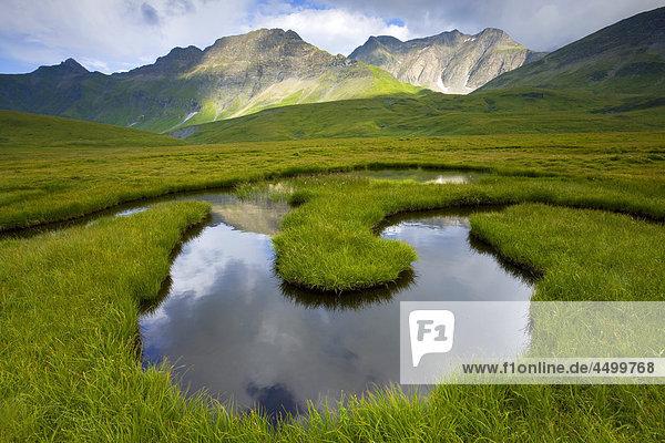 Nationalpark Berg Planung Landschaft Spiegelung Bach Surselva Sumpf Hochebene Kanton Graubünden Schweiz
