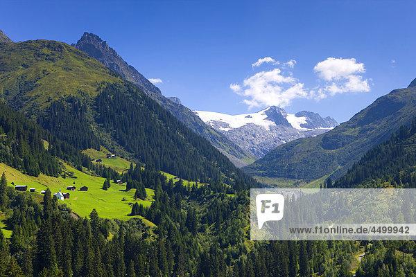 Berg Wolke Tal Wald Holz Surselva Kanton Graubünden Schweiz Kanton Graubünden