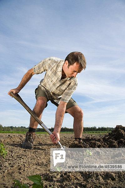 Mittlerer Erwachsener Mann beim Graben im Feld