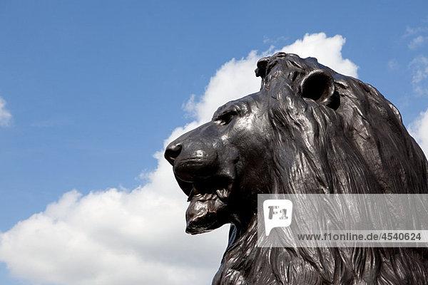 Löwenstatue in Nelsons Säule  London