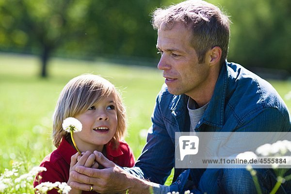 Vater und Sohn hält Löwenzahn in hellem Sonnenlicht