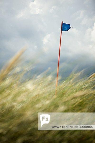 Golfplatz Flag hinter Gras