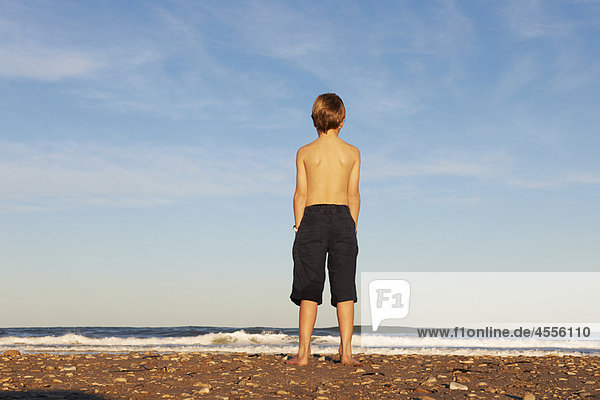 Strand  Junge - Person  Meer  hinaussehen