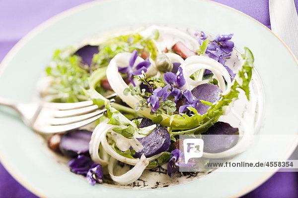 Löwenzahn und violett Salat  / Mit Englischsprachigem Rezept