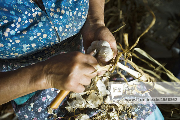 Woman preparing fresh garlic  cropped