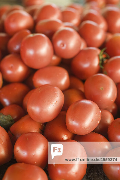 Frische reife Tomaten