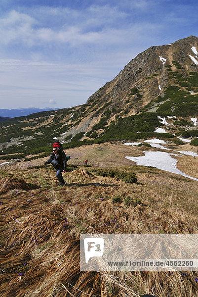 two hikers on Chornogora Ridge of Carpathian Mountains