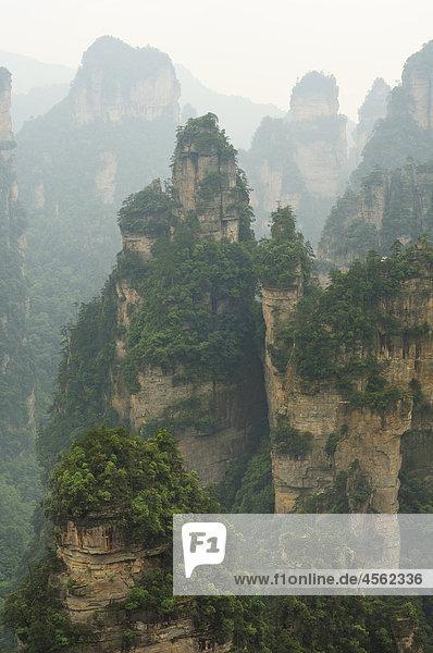 Berglandschaft im Wulingyuan-Nationalpark in der Provinz Hunan Berglandschaft im Wulingyuan-Nationalpark in der Provinz Hunan