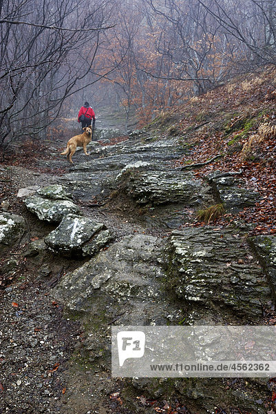 hiker and his dog walking in southern demergi mountain area of crimea