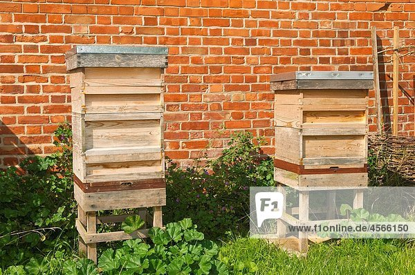 A pair of beehives in the Uk