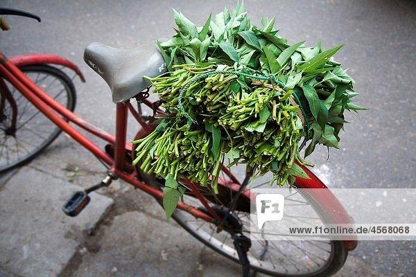 bicycle and merchant Hanoi  Vietnam