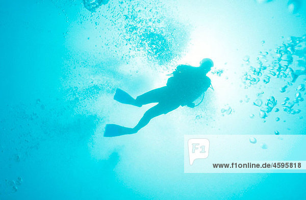 Diver. Veracruz  Mexico