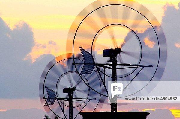 Windmill. Campos. Majorca. Balearic Islands. Spain.