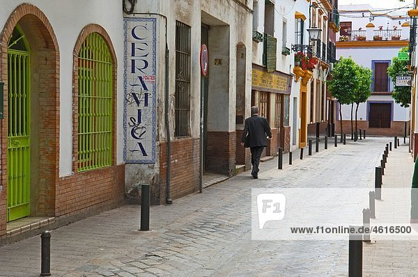 Street  Triana neighborhood  Seville  Andalusia  Spain