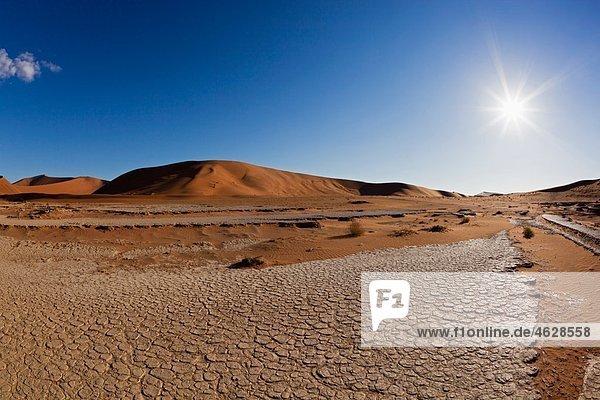 Afrika  Namibia  Namib Naukluft Nationalpark  Blick auf tote Vlei in der Namibwüste