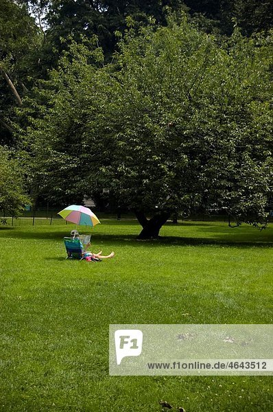 A single person reads under an umbrella in Central Park  NYC
