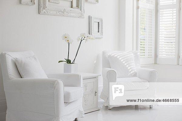 Elegante Weiße Sessel Im Wohnzimmer Pe0075350 Ojo Images