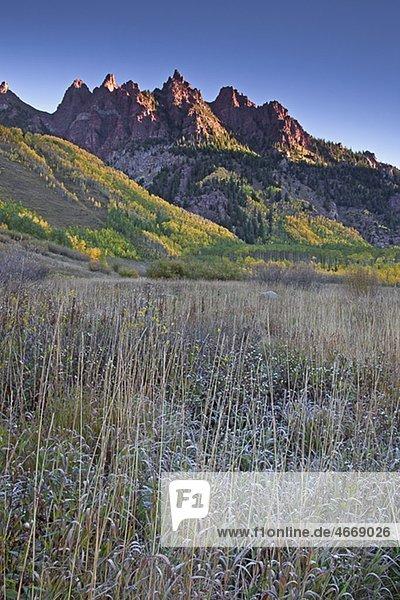 Gebirge und herbstliche Bäume  Maroon Bells  Aspen  Colorado  USA