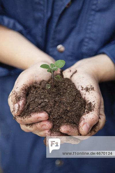 Person  die Boden mit Pflanze hält