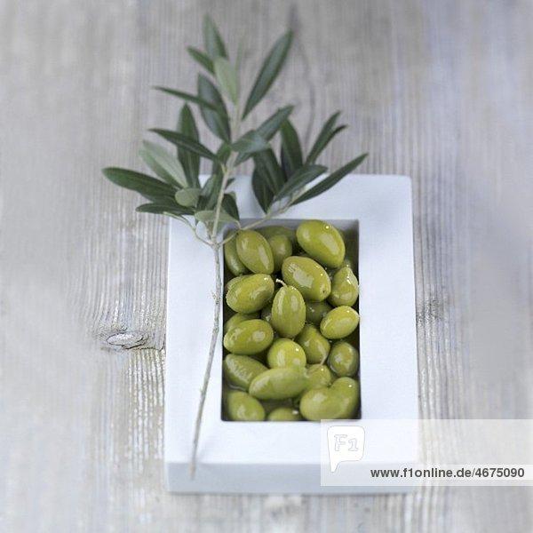 Grüne Oliven in Schale mit Olivenzweig