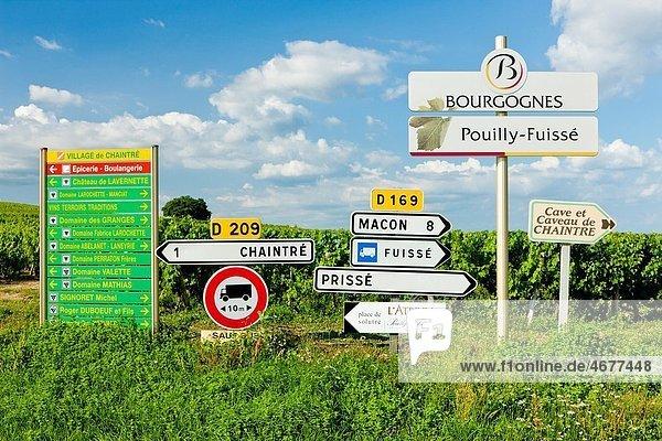 Pouilly-Fuisse  Cote Maconnais  Burgundy  France