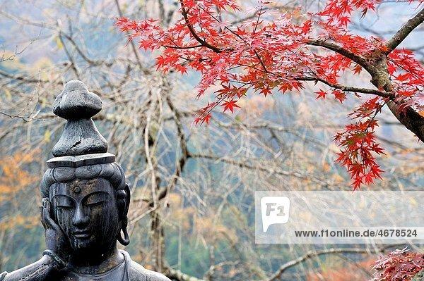 Autumn colours at Jyoko temple in Nikko  Japan