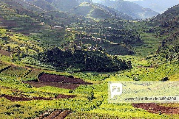 Landscape  near Kisoro  Uganda