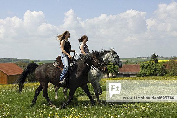 Zwei junge Frauen reiten auf ihren Pferden  Bayern  Deutschland  Europa