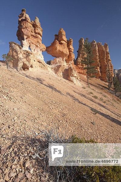 Mossy Cave  Bryce Canyon National Park  Utah  USA  Amerika
