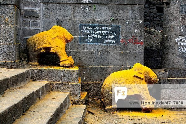 Statue of an elephant immersed in turmeric powder at the Jejuri temple   Pune   Maharashtra   India Statue of an elephant immersed in turmeric powder at the Jejuri temple , Pune , Maharashtra , India