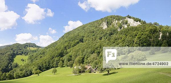 Felsen des Gaisstein und Bauernhof  Gaissteiner  Triestingtal  Niederösterreich  Österreich  Europa