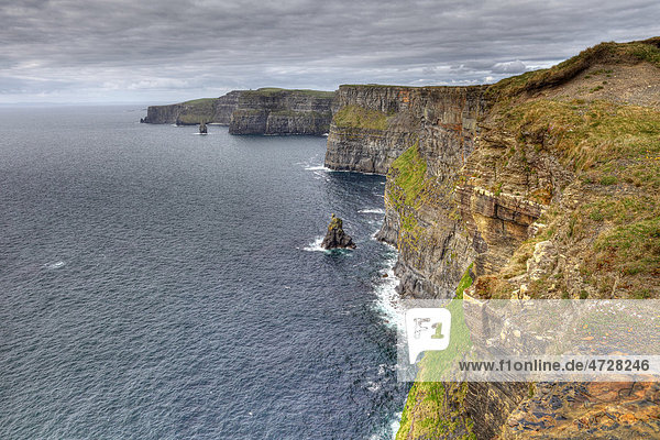 Cliffs of Moher  County Clare  Republik Irland  Europa