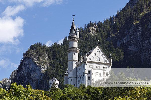 Schloss Neuschwanstein  Ostallgäu  Allgäu  Schwaben  Bayern  Deutschland  Europa