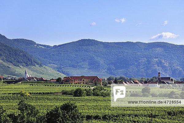 Blick von Sankt Michael über Wösendorf und Weißenkirchen  Wachau  Waldviertel  Niederösterreich  Österreich  Europa