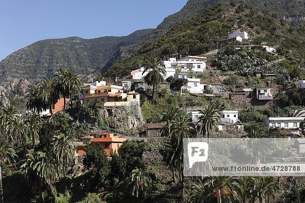 Banda Las Rosas bei Vallehermoso  La Gomera  Kanaren  Spanien  Europa Insel La Gomera