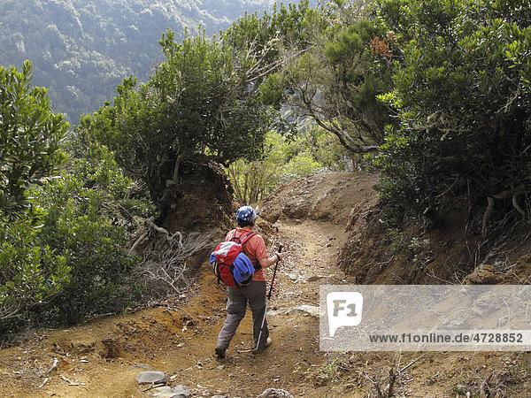 Frau mit Rucksack und Wanderstöcken wandert im Barranco de la Era Nueva  Vallehermoso  La Gomera  Kanaren  Spanien  Europa