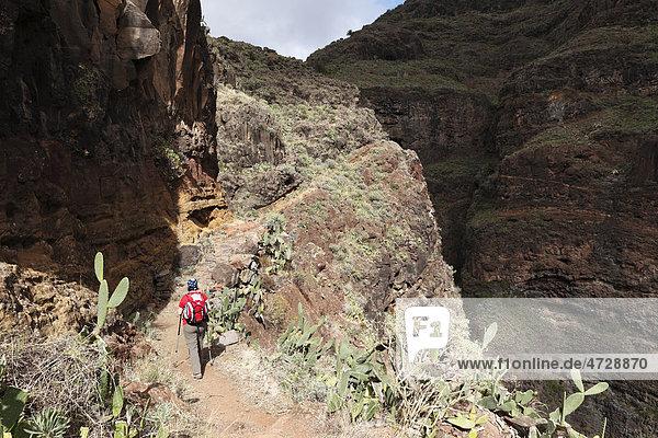 Frau mit Rucksack auf Wanderweg  Barranco de Guarimiar bei AlajerÛ  La Gomera  Kanaren  Spanien  Europa