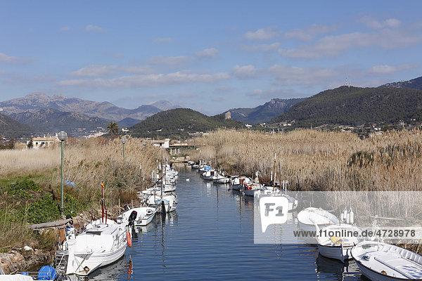 Port d'Andratx  a fishing port  Majorca  Mallorca  Balearic Islands  Spain  Europe