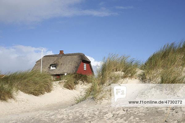 blavand d nemark europa nordsee rotes ferienhaus in den. Black Bedroom Furniture Sets. Home Design Ideas