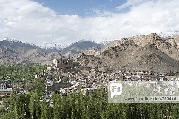 Blick von oben auf die Altstadt von Leh  alter Königspalast  Pappeln  Gebirgslandschaft  Distrikt Ladakh  Bundesstaat Jammu und Kaschmir  Indien  Südasien  Asien