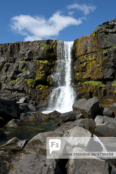 Wasserfall in die Almannagj·  Almannagja  Allmänner-Schlucht  _ingvellir  Thingvellir  Nationalpark  Golden Circle  Õsland  Island  Skandinavien  Nordeuropa  Europa