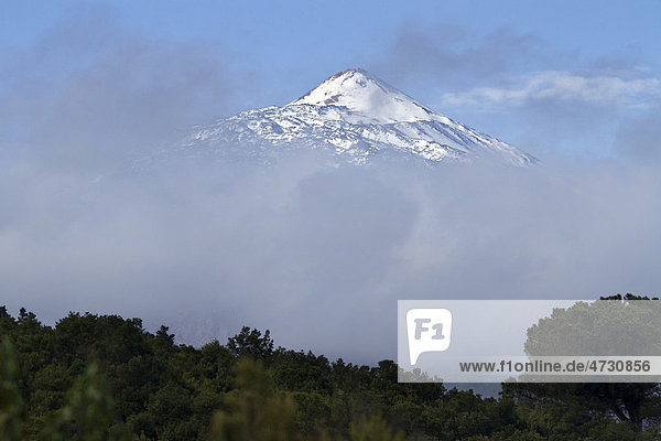 View of the Pico del Teide mountain above the clouds  Tenerife  Canary Islands  Spain  Europe