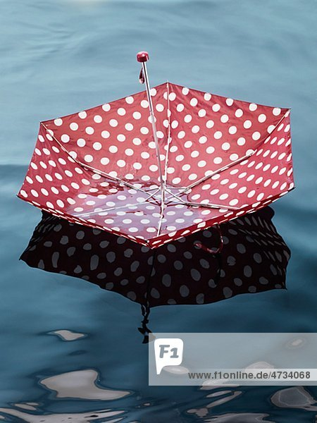 Regenschirm schwimmt auf Wasser  erhöhte Ansicht