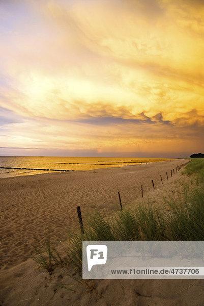 Strand im Abendrot  Fischland-Darß-Zingst  Ostsee  Mecklenburg-Vorpommern  Deutschland  Europa