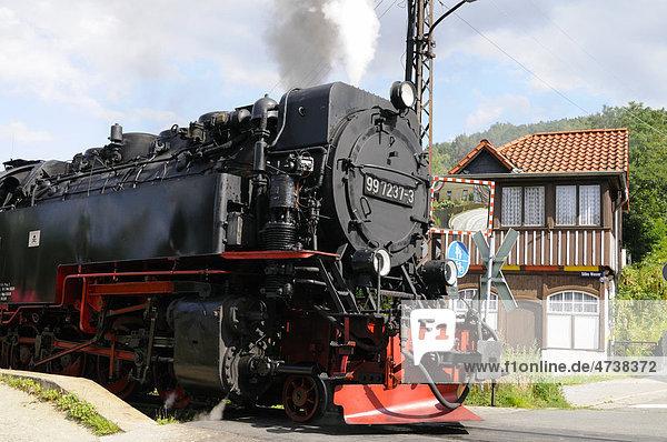 Dampflokomotive in Wernigerode  Sachsen-Anhalt  Deutschland  Europa