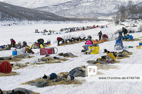 Levajok  eine Raststation des Finnmarksl¯pet  nördlichstes Schlittenhunderennen der Welt  Levajok  Finnmark  Lappland  Norwegen  Europa