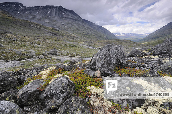 Leirdalen  Gebirgslandschaft im Jotunheimen Nationalpark  Norwegen  Skandinavien  Europa