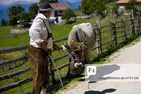 Almabtrieb im Spätsommer  Südtirol  Italien  Europa